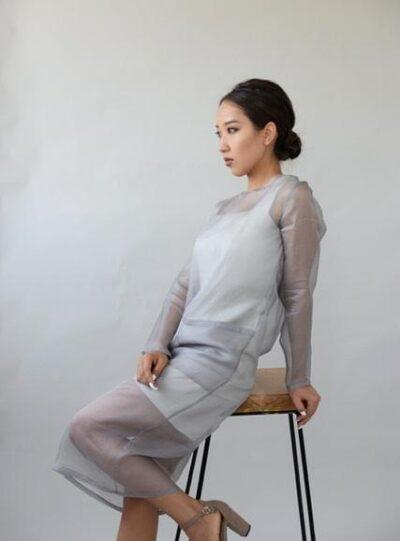 Sheer Silk Organza Dress Set Grey