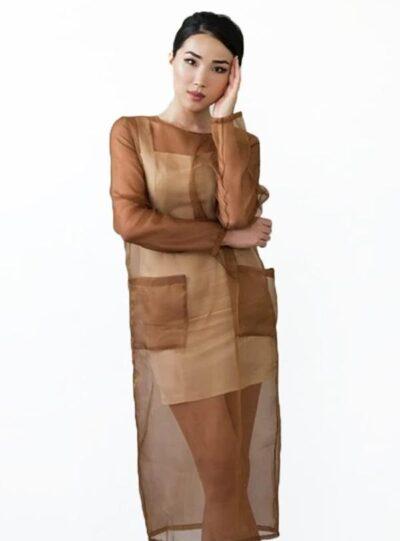 Sheer Silk Organza Dress Set Russet